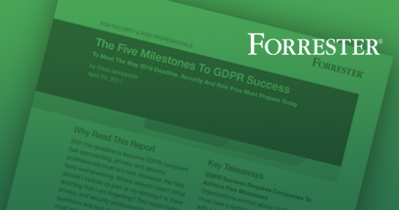 Forrester Report: The Five Milestones to GDPR Success